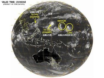 台風26号卵.jpg